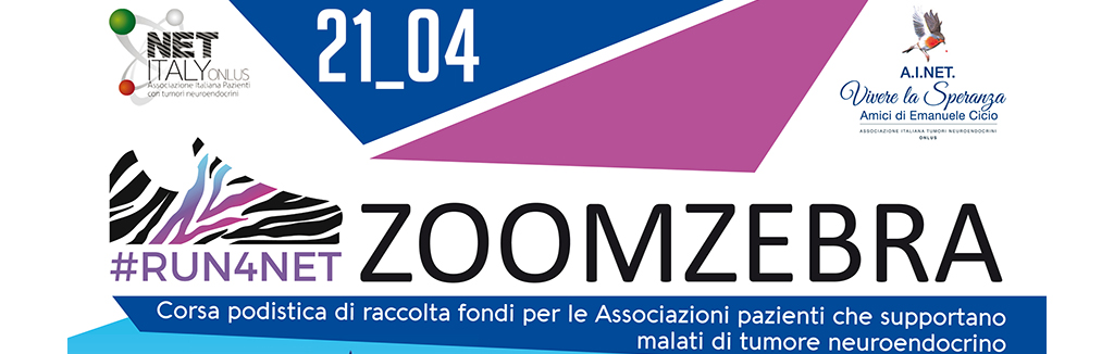 zoomzebra a3.indd